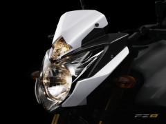 FZ8_Detail_Headlight.jpg